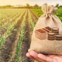 Reap Tax Rewards from Securities Harvest This Fall